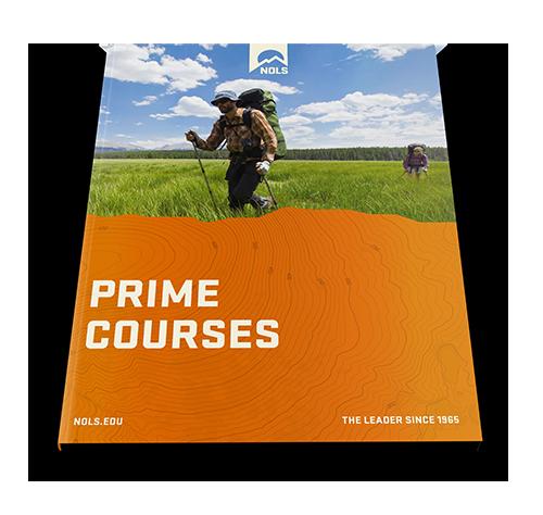 prime_mockup-500px.png