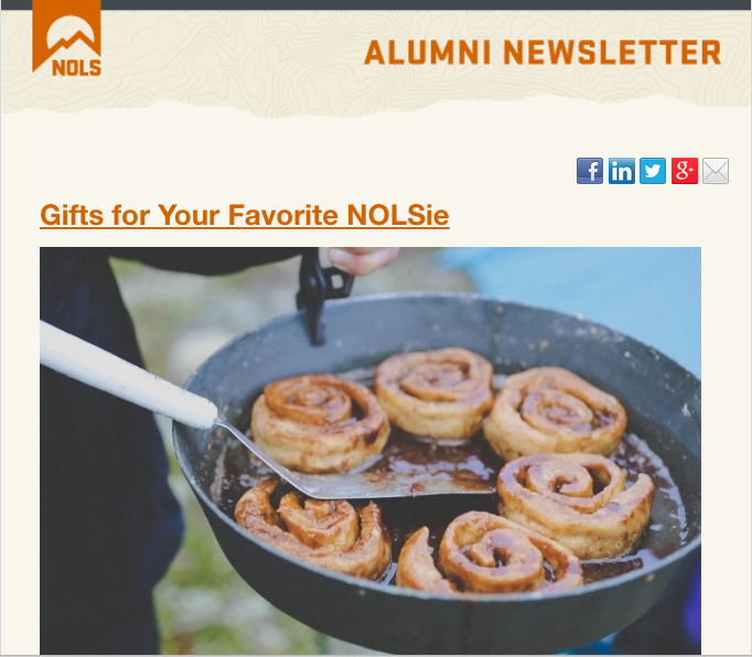 Alumni Newsletter preview