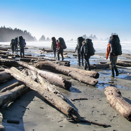 Students hiking along the Olympic Coast at low tide.
