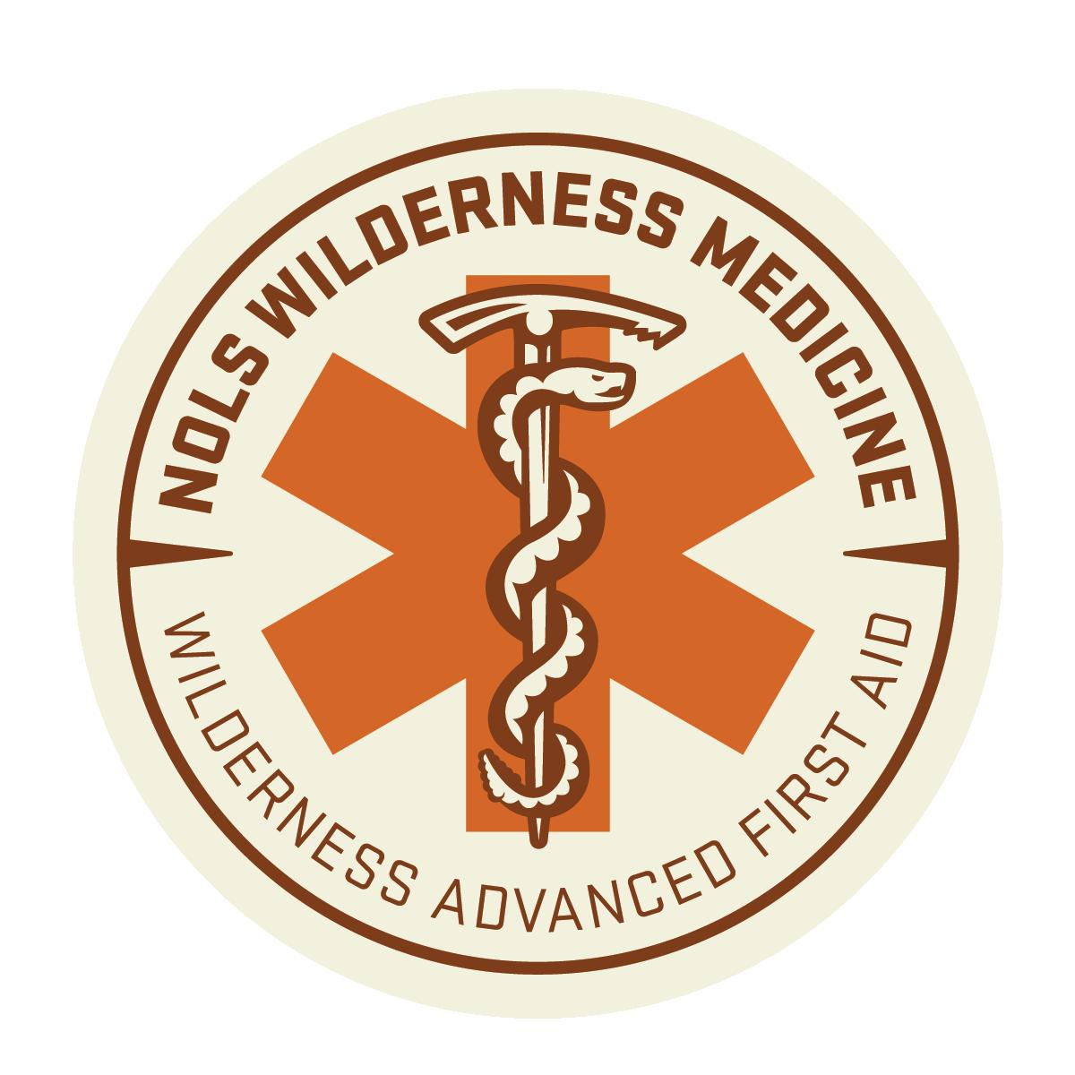 Wilderness Medicine Badges